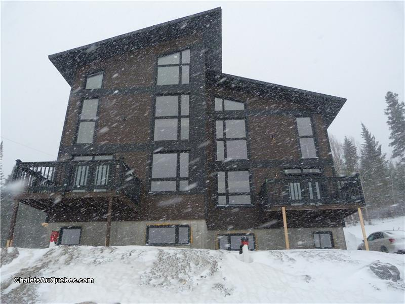location chalet ski valinouet