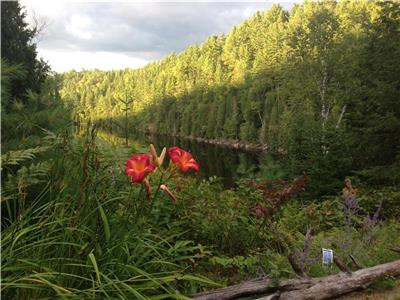 Le Solitaire Cottage - 2 minutes from the Mauricie National Park