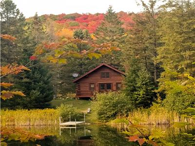 Hotel at home - The Caribou Cottage, nature and lake!