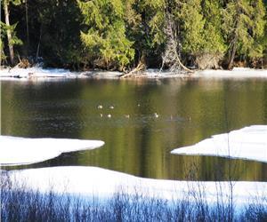 Etoile lac Memphr�magog & spa