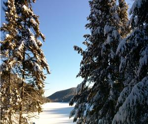 Cottage for rent - Season - Morin-Heights & St-Sauveur